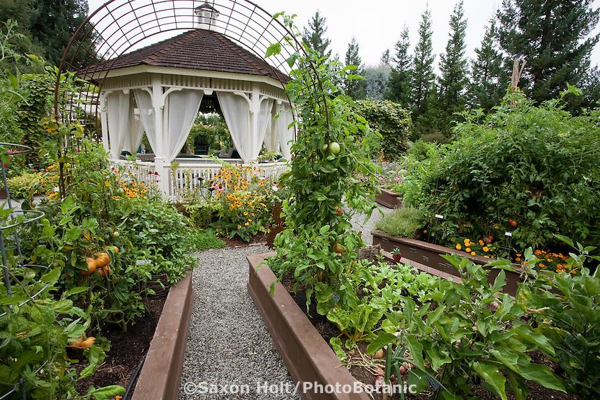 Raised bed kitchen garden of edible landscaping (Vegetables,flowers, herbs) designed around gazebo