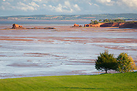 The sandy shoreline of Fundy Bay is revealed at low tide