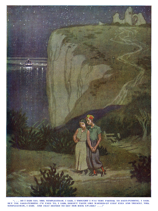 """""""...So I said yes, Mrs Wimplestraw, I said, I thought I was very partial to sago-pudding, I said. But the sago-pudding I'm used to, I said, doesn't taste like warmed-up cods' eyes and treacle, Mrs Wimplestraw, I said. And that seemed to get her back up—see?..."""""""