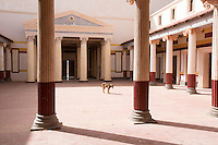 Morocco - Oasis of Fint - A lonely dog stands within a Roman movie décor within K Studios, in the Oasis of Fint. The studios were recently used for the shooting of the TV series A.D. The Bible Continues.