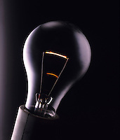 LIGHT BULB<br /> Clear bulb shows filament.