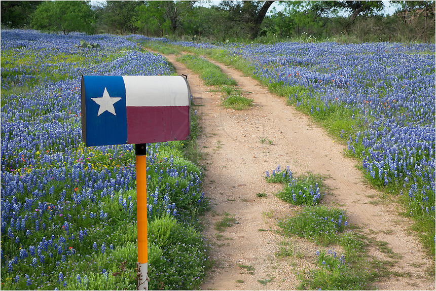 While out hunting Texas wildflowers, I happened across this mailbox painted with a Texas flag. On either side of the dirt road were bluebonnets mixed with other assorted colorful flowers. I stopped to shoot this little scene, but to obtain the correct angle I had to set up the tripod on top of my car hood and shoot slightly down. This print was the final product.
