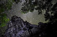 Maya Sky