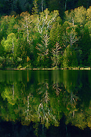 Adirondack park, Washbowl Lake, Spring, New York