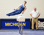 Michigan Gymnastics (Men)