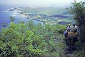 Mule trail ride down steep cliffs to Kalaupapa Peninsula, Molokai