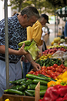 Man shopping for tomatoes at Farmer's Market in Copley Square on St. James Street Boston MA