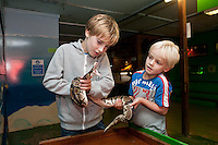 Feeding time for a Python snake at the White Post Farm Centre, Nottinghamshire