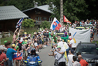 Green Jersey Peter Sagan (SVK/Tinkoff) coming up and encoutering some Sagan-fans along the way &amp; enjoying it<br /> <br /> Stage 18 (ITT) - Sallanches &rsaquo; Meg&egrave;ve (17km)<br /> 103rd Tour de France 2016