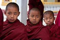 Myanmar, Burma.  Three Young Boy Buddhist Monks, Alodaw Pauk Pagoda, Nampan Village, Inle Lake, Shan State.