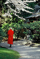 A woman in a red coat along the gravel path under a white Japanese cherry tree in Spring, at Nitobe Memorial Garden on the campus of UBC, Vancouver, BC.
