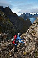 Female hiker climbs rocks near summit of Reinebringen, Moskenesoy, Lofoten Islands, Norway
