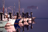 Commercial Fishing Boats docked on Fraser River, Steveston, BC, British Columbia, Canada