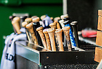 15 June 2016: A grouping of wooden baseball bats are ready in their dugout rack during a game between the Chicago Cubs and the Washington Nationals at Nationals Park in Washington, DC. The Cubs fell to the Nationals 5-4 in 12 innings, giving up the rubber match of their 3-game series. Mandatory Credit: Ed Wolfstein Photo *** RAW (NEF) Image File Available ***