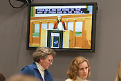 SEEDS co-founder Brenda Brodie speaks in support of an ordinance allowing backyard chickens during the Feb. 2, 2009, Durham City Council meeting. The ordinance was unanimously passed two weeks later.
