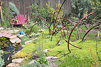 Dan Johnson took some srcap metal and made an interesting garden sculpture which he placed in a bed of thyme near the  back yard pond of his Denver garden