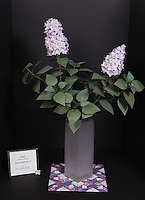 Lilac designed and folded by Delrosa Marshall, New York, USA.