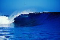 Tubing wave, Teahupoo, Tahiti, French Polynesi