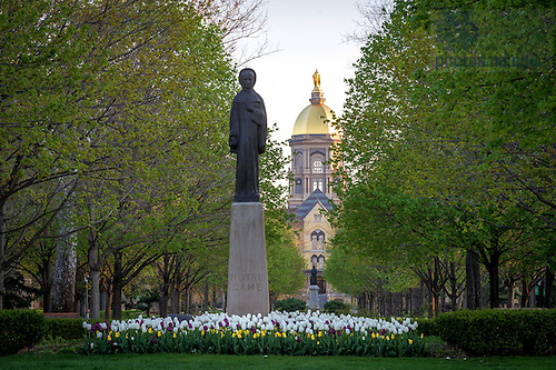 Apr. 24, 2016; Statue of Our Lady of the University in the main circle. (Photo by Matt Cashore/University of Notre Dame)