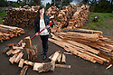 PE00127-00...WASHINGTON - Ruth Spring splitting wood. (MR #S12)