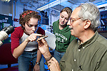 0711-34 271.CR2.College of Life Sciences.Biology.Dr. Riley Nelson's Lab..November 12, 2007..Photography by Jaren Wilkey..Copyright BYU Photo 2007.All Rights Reserved .photo@byu.edu  (801)422-7322