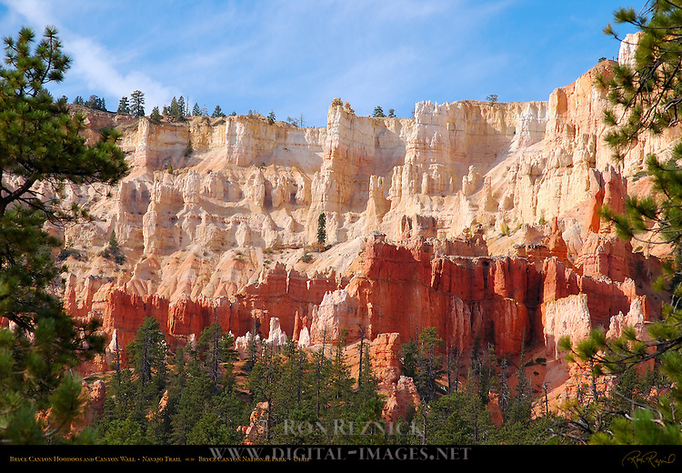 Bryce Canyon Hoodoos and Canyon Wall, Navajo Trail, Bryce Canyon National Park, Utah