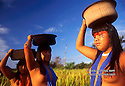 Mehinako Indigenous People, Xingu, Amazon rain forest, Brazil.