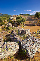 Kounos ampitheatre which could sit 5000 people. The theatre has hellanistic & Roman features . Kounos (Counos) Archaeological Site, Dalyan, Turkey