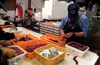 Processing salmon eggs, also known as roe, at Trident Seafoods in Kodiak, Alaska.