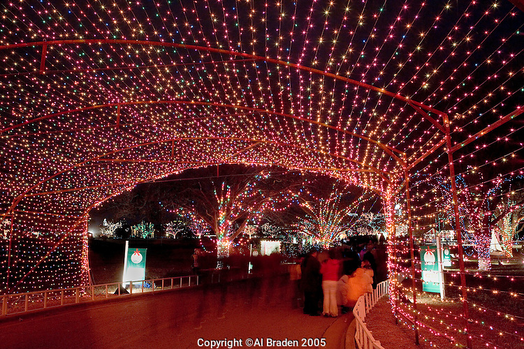 Trail of Lights, Zilker Park, Austin, Texas | Al Braden