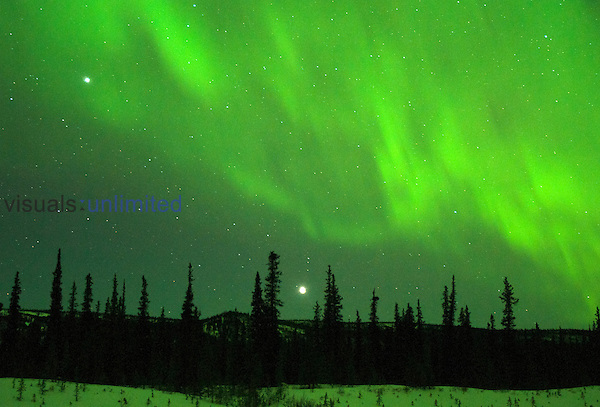Aurora Borealis or Northern Lights in the winter sky with Mars and Venus, Alaska Range Mountains, Alaska, USA