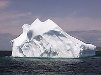Iceberg floating in the bay at St Anthony, Newfoundland and Labrador, Canada