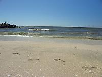 SEA_LOCATION_80347