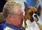 Randy Thayerj,  from Belmond, Ia., waits with his boxer &quot;Star&quot; for competition at the Big Dog Show at the Iowa State Fairgrounds in Des Moines, Iowa.