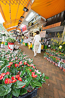 Flowers for sale on Flower Market Road, Mong Kok, Kowloon, Hong Kong SAR, People's Repbulic of China, Asia