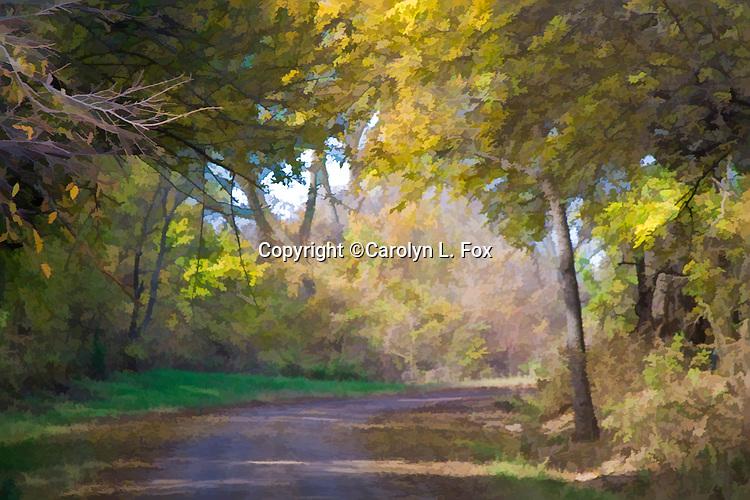 A path winds through pretty trees in Kansas.