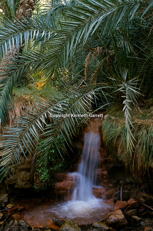 Scenic, waterfall, pool of water, palms, oasis, Unlooted Tomb; Bahariya Oasis; Egypt