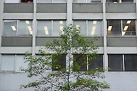 Green tree in front of a nondescript office building in downtown Vancouver, BC, Canada