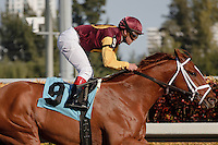 Discreet Dancer with jockey Javier Castellano up, wins by 5  1/2 lengths at Gulfstream Park. Hallandale Beach, Florida. 01-07-2012