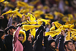 18 November 2006: Wake Forest fans waive yellow towels. The Virginia Tech Hokies defeated the Wake Forest University Demon Deacons 27-6 at Groves Stadium in Winston-Salem, North Carolina in an Atlantic Coast Conference NCAA Division I College Football game.
