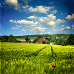 Naive style rural landscape <br />