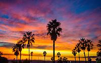 Santa Monica Beach amid the sunset on Monday, December 2, 2013.
