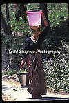 A woman wearing a colorful sari carrying water on her head to her home in Tehri Garwhal, India, in the state of U.P. in the Himalayas.