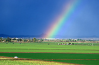 Yuma, Arizona agricultureal fields.