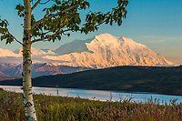Denali and Wonder Lake, Denali National Park, Alaska.