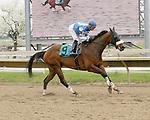 Parx Racing Win Photos_04-2014