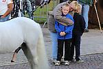 Foto: VidiPhoto<br /> <br /> BEMMEL - De grootste ponymarkt van Nederland in het Gelderse Bemmel kreeg maandag een forse teleurstelling te verwerken. Met een geschatte aanvoer van slechts 900 pony's en paarden, bleef het aantal dieren fors achter bij dat van andere jaren. Oorzaak is volgens handelaren de aangescherpte eisen voor transport, waardoor er per vrachtwagen minder pony's en paarden geladen mogen worden. De relatief dure vrachtkosten in combinatie met de lage prijzen voor de dieren, houden veel handelaren weg bij de traditionele markten. De ponymarkt van Bemmel is de grootste van ons land. Wel is er een trend dat er steeds meer paarden worden aangevoerd en de markt een geduchte concurrent dreigt te worden voor de drie grote paardenmarkten van Elst, Hedel en Zuid-Laren. Foto: Praktijonderwijs.