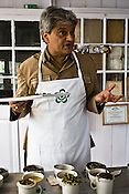 Rajah Banerjee, the owner of Makaibari Tea Estate, talks of tea and poses for a portrait with his finest produce and also his favourite Bai-mu-dan tea leaves at the Makaibari Tea estate, in Darjeeling, India