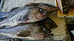 Fish sit on ice in a fish market in the Chinatown district of San Francisco, California.  Jim Urquhart/Straylighteffect.com