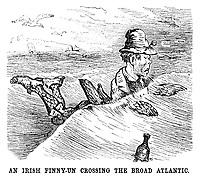 An Irish Finny-un crossing the broad Atlantic.